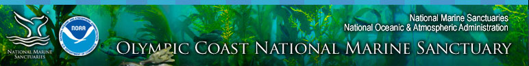 Olympic Coast National Marine Sanctuary About Us section includes pages for Contact Us, Staff Bios, Facilities, Related Links, and Sitemap