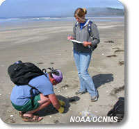 photo of 2 volunteers monitoring on the beach