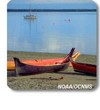 photo of canoes