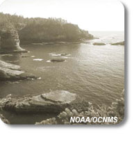 historic photo of Cape Flattery