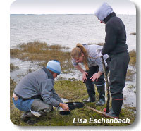 Photo of students learning how to take measurements on the beach