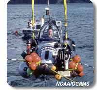 photo of a scientist in a submersible
