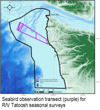 Seabird observation transect