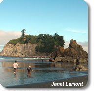 photo of two people walking along the remote beaches of Olympic Coast