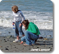 photo of 2 kids beachcombing