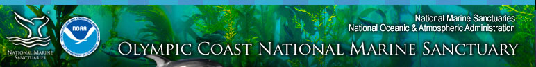 Olympic Coast National Marine Sanctuary Get Involved section includes Advisory Council and Volunteer With Us