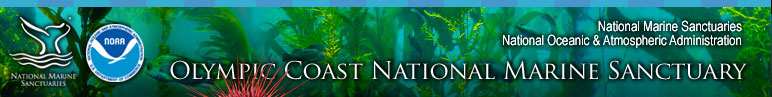 Olympic Coast National Marine Sanctuary Library includes Photos, Videos, Documents, and Downloadable Flyers and Posters