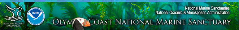 Olympic Coast National Marine Sanctuary Ocean Literacy section includes K-12, Higher Education, Interpretive Services, B-WET, Community Outreach, and Education Calendar
