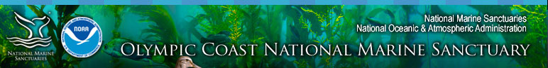 Olympic Coast National Marine Sanctuary News and Events