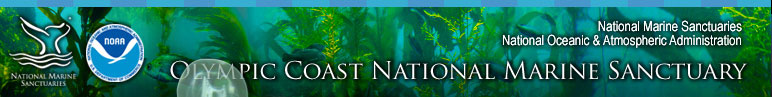 Olympic Coast National Marine Sanctuary Science section includes Seafloor Mapping, Oceanography, Deep Sea Coral and Sponges, Wildlife Research, Coastal Habitats, Citizen Science, Ecosystem Processes, Research Surveys, and Research Assets